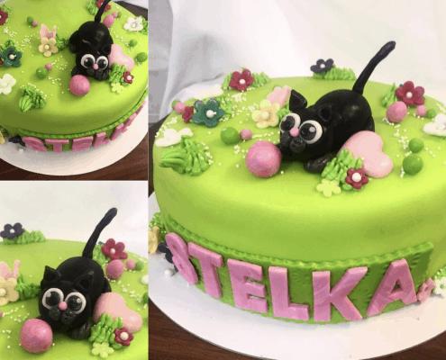 Detksá torta s mačiatkom na lúke plnená jahodami a malinami